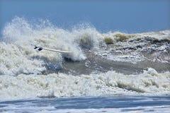 De surfplank van Riderless in breker stock afbeeldingen