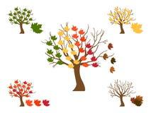 De symbolen van de herfst Stock Foto