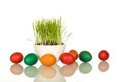 De symbolen van Pasen - verse gras en eieren Stock Foto