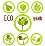 De symboleninzameling van Eco royalty-vrije illustratie
