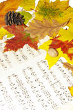 De symfonie van de herfst Royalty-vrije Stock Foto's