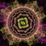 De symmetrische groei van bacteriën Royalty-vrije Stock Foto's