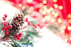 De tak dichte omhooggaand van Kerstmis Royalty-vrije Stock Fotografie