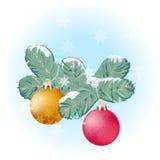 De tak en de ballen van de kerstboom Stock Foto's