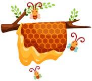 De tak van de bijenkorf Royalty-vrije Stock Foto