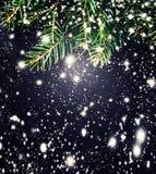 De Tak van de Kerstmisspar over zwarte achtergrond met het vallen sno Stock Afbeeldingen