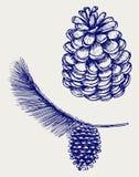 De tak van de pijnboom met kegels Stock Fotografie