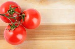 De tak van de tomatenkers Stock Afbeelding