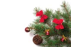 De tak van Kerstboom met korte die naalden verfraaide klokken en bogen op witte achtergrond worden geïsoleerd Stock Foto's
