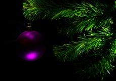 De tak van de Kerstmisspar met stuk speelgoed op een zwarte achtergrond Stock Foto