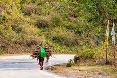 De takbrandhout van de mensen dragend boom op zijn schouders voor het verwarmen in de winter en tradinitally gebruikt voor kok he stock foto
