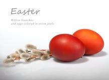 De takken en de eieren van de wilg Stock Foto