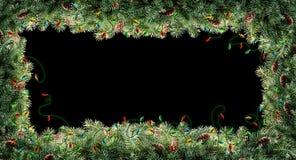 De takken van de kerstboom royalty-vrije stock afbeeldingen