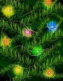 De takken van de kerstboom en lichte slinger Stock Foto