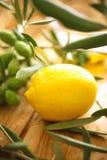 De takken van de olijf met citroen Stock Foto