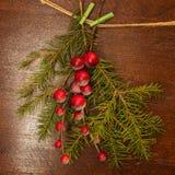 De takken van de pijnboom met de bessen van Kerstmis Stock Foto