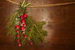De takken van de pijnboom met de bessen van Kerstmis Stock Afbeelding