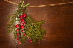 De takken van de pijnboom met de bessen van Kerstmis Stock Afbeeldingen