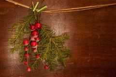 De takken van de pijnboom met de bessen van Kerstmis Royalty-vrije Stock Afbeelding