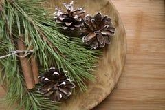 De takken van de pijnboom met kegels Royalty-vrije Stock Foto