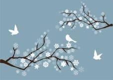 De takken van de sneeuw Stock Fotografie