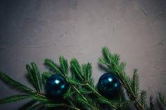 De takken van de Kerstmisspar over donkere achtergrond met exemplaarruimte stock fotografie