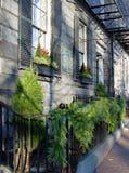 De takslinger die van de pijnboom de zwarte omheining van het wroughijzer in Boston versiert Stock Foto's