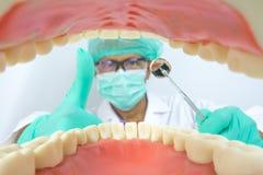 De tandarts onderzoekt mondholte met tandhulpmiddel Royalty-vrije Stock Afbeelding