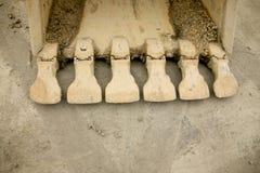 De tanden van de bulldozer Royalty-vrije Stock Fotografie