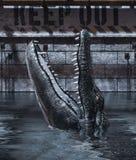 De tank van de alligator gelieve te houden uit royalty-vrije illustratie