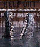 De tank van de alligator gelieve te houden uit vector illustratie