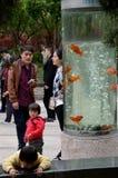 De tank van China, van families en van vissen in Hongmei-Park in Changzhou stock fotografie