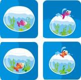 De tank van vissen Stock Afbeelding