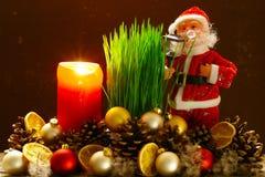 De tarwe van Kerstmis Royalty-vrije Stock Foto's