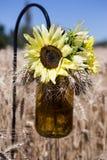 De tarwegebied van bloemenmason jar Royalty-vrije Stock Afbeelding