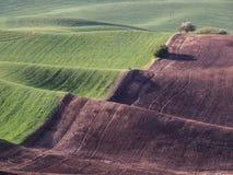 De tarwegebieden geven de contouren aan van de Palouse-heuvels stock foto