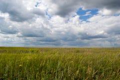 De tarweweg van het landbouwgebied het zaaien de zomer van het hemellandschap Stock Afbeelding