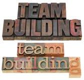 De teambouw Royalty-vrije Stock Afbeelding