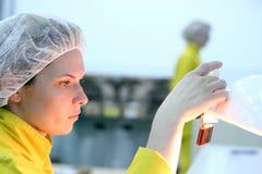 De Technicus van het laboratorium - Kwaliteitsbeheersing Royalty-vrije Stock Foto's