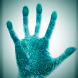 De technologie menselijke palm van de kring. Royalty-vrije Stock Foto