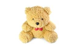 De teddybeer isoleert op witte achtergrond stock foto's