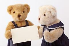 De teddybeer van paren Stock Afbeeldingen