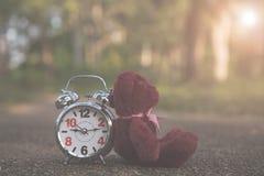 De teddybeer zit achter Retro wekker op conceteweg in de tuin royalty-vrije stock foto's