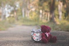 De teddybeer zit achter Retro wekker op conceteweg in de tuin stock fotografie