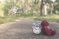 De teddybeer zit achter Retro wekker op conceteweg in de tuin royalty-vrije stock foto