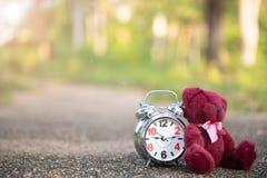 De teddybeer zit achter Retro wekker op conceteweg in de tuin stock afbeelding