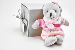 De teddybeer zit met giftdoos in bruine doos op witte achtergrond Stock Afbeeldingen