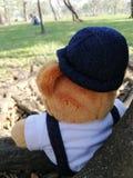 De teddybeer zit op een boom, ziet het meisje stock foto