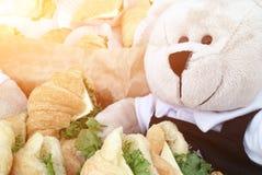 De teddybeerachtergrond Stock Foto