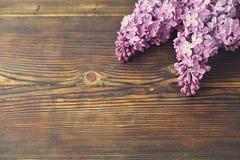 De tedere minimalistic lente bloeit samenstelling op textuuroppervlakte Mooie vrouwelijke installatiedecoratie voor de kaart van  Royalty-vrije Stock Foto's